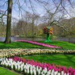 keukenhof_parc_pixabay_hello-amsterdam.fr